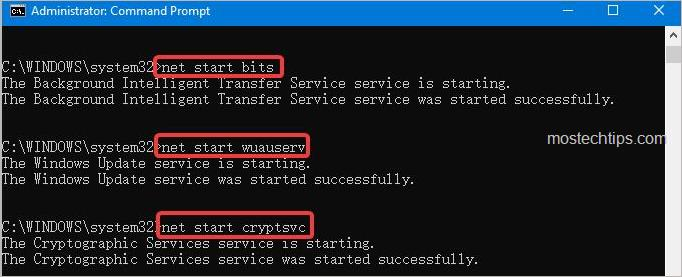 start the services related to Windows Update