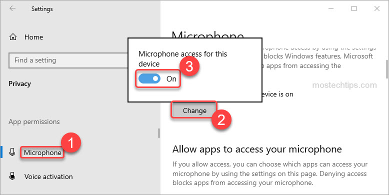 turn on microphone access for this device